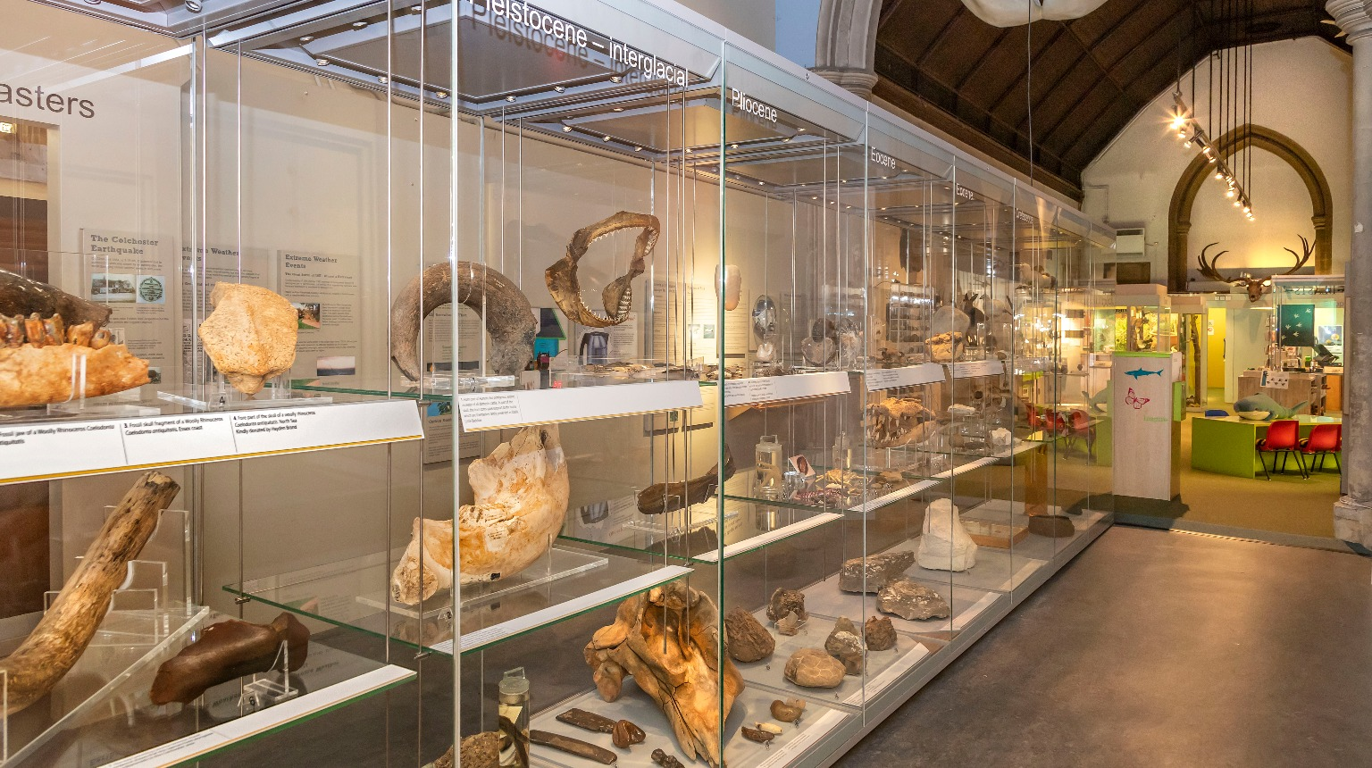Natural History Museum (Colchester), The Climate Change and Geology Gallery